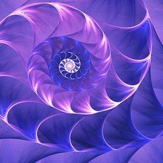 ANG brand fibonacci